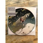 """Reapers 7"""" Picture Disc"""
